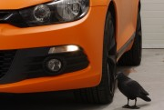 VW SIROCCO : zmiana koloru auta folią na pomarańczowy mat : Krucza18 : Osielsko/k.Bydgoszczy